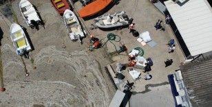 Caddebostan Sahili'nde müsilaj temizliği havadan görüntülendi