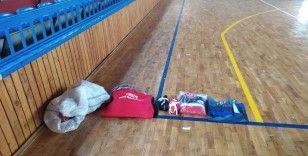 Dünya ve Avrupa Güreş Şampiyonu Kayaalp'ten spor desteği