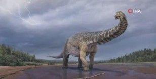 Avustralya'da kıtanın en büyük dinozoru keşfedildi