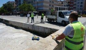 Çanakkale Boğazı'nda bugün de müsilaj temizliği devam ediyor