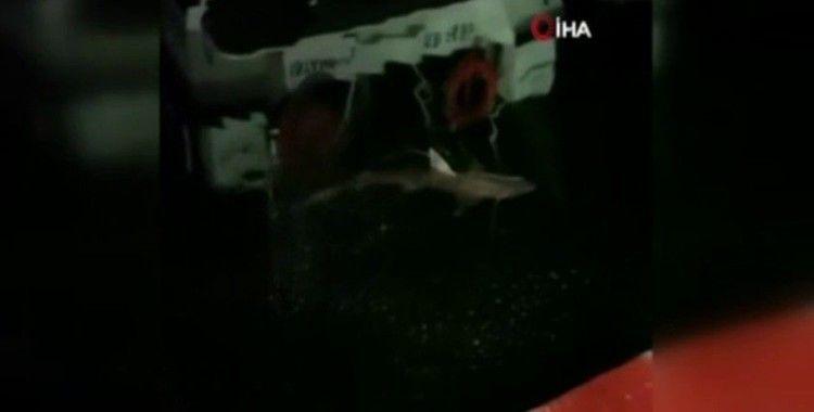 Haliç'te balıkçının oltasına köpek balığı takıldı