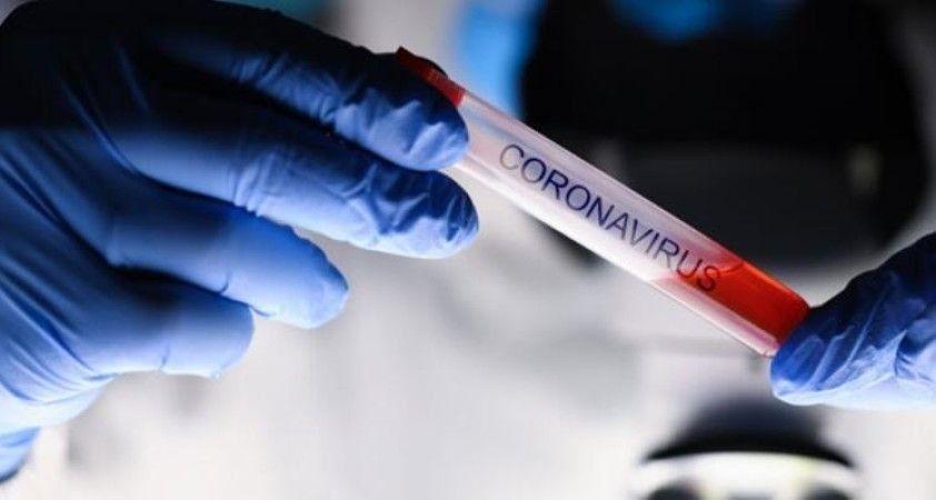 Son 24 saatte koronavirüsten 71 kişi hayatını kaybetti