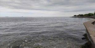 Caddebostan sahilindeki müsilaj yoğunluğu azaldı