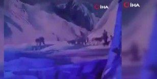 Çin'de gerçek kurtlar ile tiyatro gösterisi