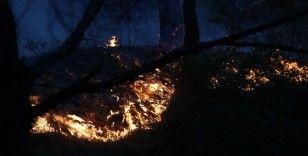 Foça'daki yangın büyük ölçüde kontrol altında