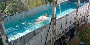 Antalya'da sıcak hava ve nemden bunalan çiftçi, havuza çevirdiği kamyonunun kasasında serinledi