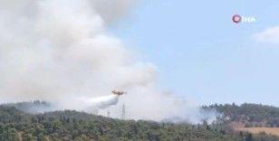 Selanik'te orman yangını: Bir otel tahliye edildi