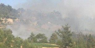 Kahramaraş'ta çıkan orman yangınına havadan ve karadan müdahale ediliyor