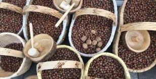 Türkiye'den yılın ilk yarısında 1 milyar dolarlık fındık ihracatı gerçekleştirildi