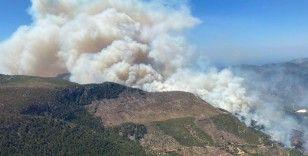 Mersin'deki orman yangını büyüyor