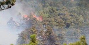Osmaniye'de ormanlık alanda yangın çıktı