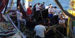 Yasakların bitmesine 45 gün kala balıkçıların gözü palamutta