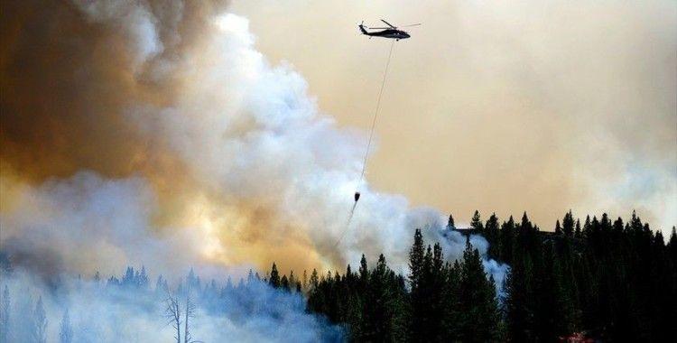 ABD'nin California eyaletinde orman yangınları sürüyor