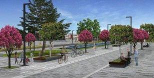 Kent estetiğine uygun sağlıklı ağaçlar dikilecek