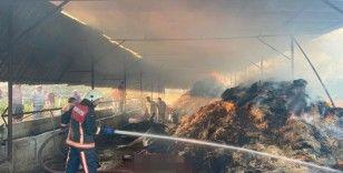 Ahırda çıkan yangında 13 büyükbaş hayvan telef oldu