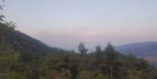 Bilecik'te kontrol altına alınan orman yangını yeniden alevlendi