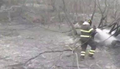 Sardunya Adası'ndaki yangın iki noktada devam ediyor