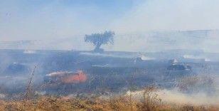 Susurluk'ta 100 dönüm arazi ve 350 saman balyası yandı