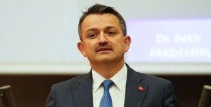 Bakan Pakdemirli: 'Adana'daki orman yangını kontrol altına alındı'