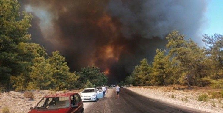 Tarım ve Orman Bakanı Pakdemirli, Antalya'daki yangın bölgesine geliyor