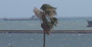 Samsun'da kuvvetli rüzgar etkisini artırıyor!