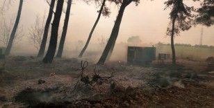 Muz seraları yandı traktörler alevlere teslim oldu