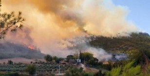 Tarım Orman-İş Sendikası Başkanı'ndan 'Manavgat' değerlendirmesi: Son 100 yılın en büyük yangınıyla karşı karşıyayız