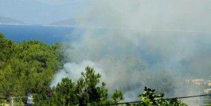 Çeşme'de bir gün arayla çıkan iki yangın kısa sürede söndürüldü