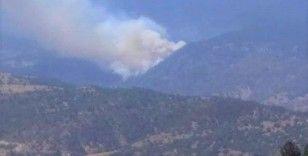 Kütahya'daki orman yangına müdahale ediliyor