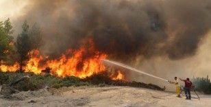 TEMA'dan yanan ormanlar için kampanya: 'Yaşamı Yeniden yeşerteceğiz'