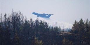 Adana Aladağ'daki orman yangını kontrol altına alındı