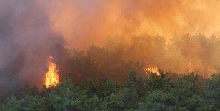 Manavgat'ta orman yangını devam ediyor, metrelerce yükselen alevler böyle görüntülendi