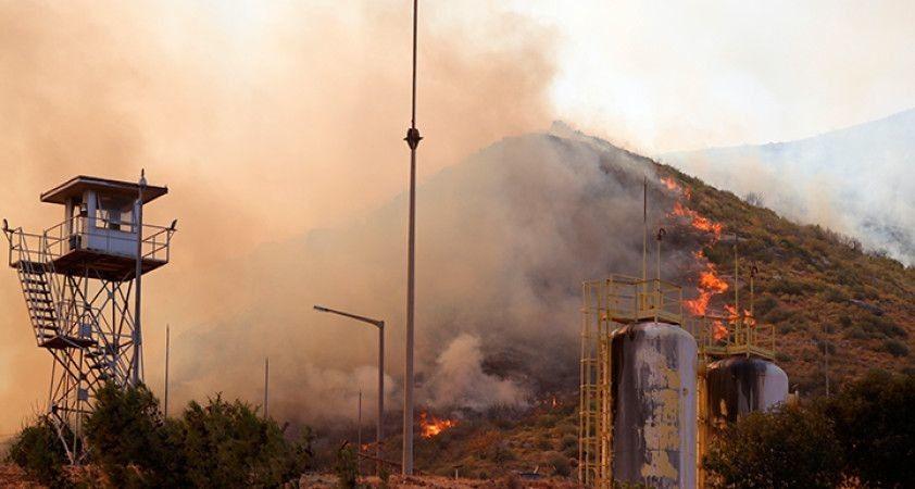 Milas'ta alevler termik santralin bahçesine kadar girdi