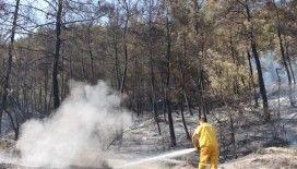 Sarayköy'de 1 dönüm ormanlık alan zarar gördü