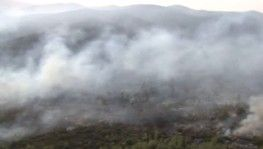 160 yangın kontrol altına alındı, 14'ünü söndürme çalışmaları sürüyor