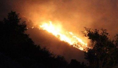 Denizli'de yerleşim yerine yaklaşan yangın devam ediyor