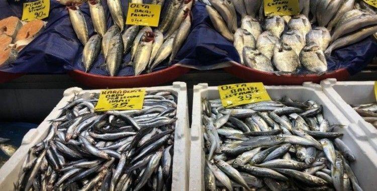 Sezon açıldı balık tezgahları şenlendi