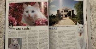 Van Kedisi Küresel Medya Dergisinde