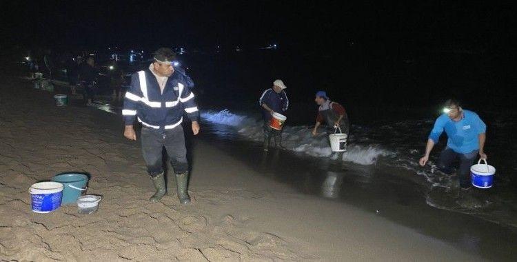 Bartın'da balıklar sahile vurdu