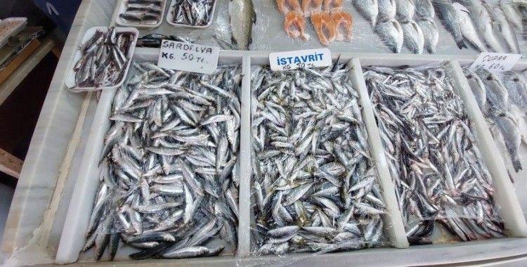 Poyraz, balık fiyatlarını allak bulak etti