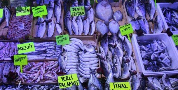 Balık tezgahları şenlendi ama fiyatlar cep yakıyor