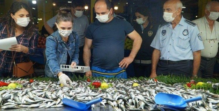 Kağıthane'de semt pazarlarında balık denetimi
