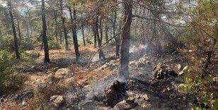 Muğla'da 13 noktada çıkan orman yangınları kontrol altına alındı