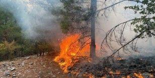 Muğla'da 15 yıldırım yangını söndürüldü