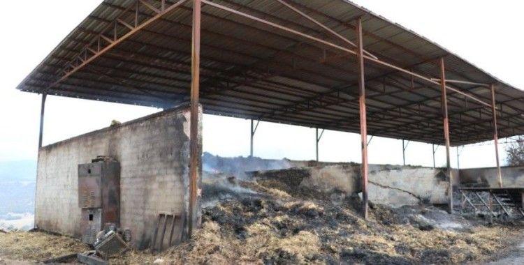 Amasya'da çıkan yangın hala devam ediyor