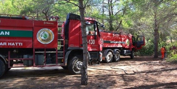 Manavgat'ta çıkan orman yangınları havadan ve karadan müdahaleyle söndürüldü