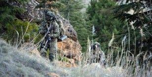 Bitlis'te 4 terörist etkisiz hale getirildi