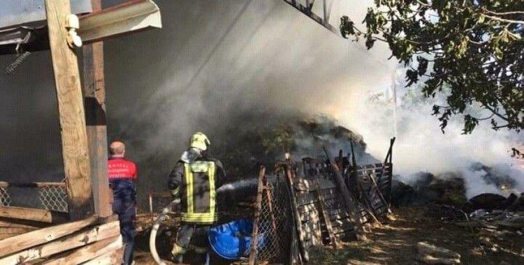 Besihane yangınında 80 kuzu telef oldu
