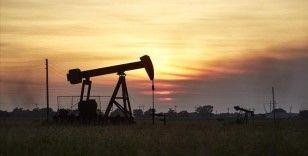 ABD ve Çin'in rezerv satışlarının petrol fiyatlarını uzun vadede etkilemesi beklenmiyor