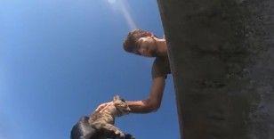 İskelede mahsur kalan kediyi Sahil Güvenlik ekipleri kurtardı